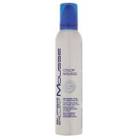 HAIR HAUS Super Brillant Color Mousse silber 250 ml