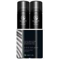 Paul Mitchell Awapuhi Wild Ginger Finishing Spray Duo