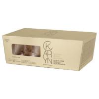 Inebrya Ice Cream Karyn Protein Booster 12x14 ml