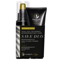 Paul Mitchell Awapuhi Wild Ginger Mirrorsmooth High Gloss Primer + free Shampoo