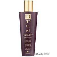 Alterna Ten Perfect Blend Shampoo 920 ml